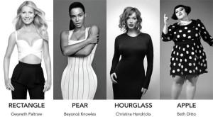 Celebrity Body Types